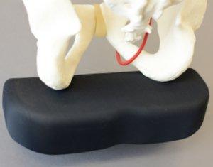 sit-bones-nexride.jpg